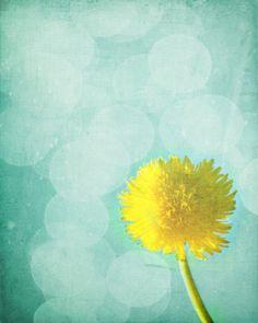Dandelion Art Print  Yellow Aqua Surreal by SevenElevenStudios