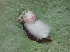 ....little baby mouse in a seed pod...  Needle Felted.....