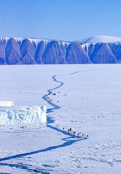 Groenlandia, país de los esquimales - Qaanaaq, fishing at the crack   Flickr - Photo Sharing!