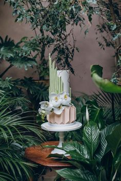 The Art of Green Tea at the Matara Centre Bridal Shoot, Wedding Shoot, Wedding Venues, Zen Wedding, Chic Wedding, Unique Weddings, Real Weddings, Cool Color Palette, Creative Wedding Cakes