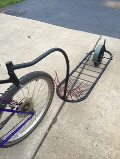 Bike trailer by Jim Kaleta