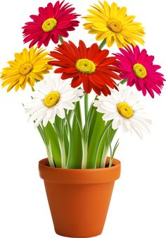 Find Fresh Spring Color Flowers Vector Illustration stock images in HD and millions of other royalty-free stock photos, illustrations and vectors in the Shutterstock collection. Silk Flower Wreaths, Silk Flowers, Illustration Blume, Image Clipart, Flower Phone Wallpaper, Flower Clipart, Good Afternoon, Flower Pictures, Spring Colors