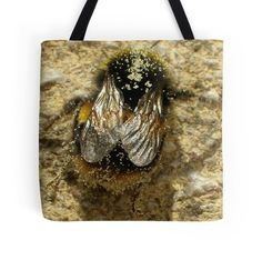 Bumble-Bee Wings