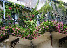 Balcony-Trailers and Climbers