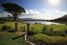 The Best Gourmet Picnics in the Cape – The Inside Guide
