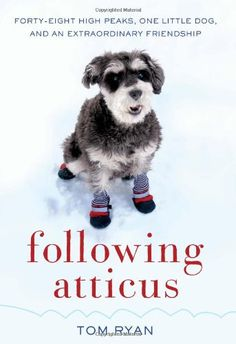"""Following Atticus ~ More than a man and his dog story.  A wonderful reminder to """"follow your bliss."""""""