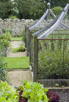 http://www.arnemaynard.com/portfolio/the-rejuvenation-of-a-garden.aspx