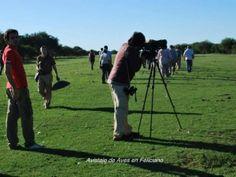 Una Tierra Diferente - Sitio Oficial de Turismo de Entre Rios - Exitoso encuentro de avistaje de aves en Feliciano