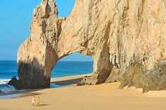 """Cabo San Lucas City Guide: Plan your trip, local info, weather, accommodations, activities, fishing, golf & more. Cabo San Lucas Overview Located at the top of Mexico's Baja Peninsula where the Pacific meets the Sea of Cortez at the iconic Land's End arch (""""El Arco""""), Cabo San Lucas is all about non-stop action, nightlife, celebrity sightings, beaches and world-class sportfishing plus luxurious amenities and astonishing natural beauty. #travel #Mexico #LosCabos"""