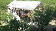 Offerte di lavoro Palermo  L'immobile di Ciaculli era stato trasformato in uno spazio di utilità sociale dove si producevano marmellate e alimenti ricavati dai mandarini  #annuncio #pagato #jobs #Italia #Sicilia Palermo abusivi nel bene confiscato diventato un'azienda