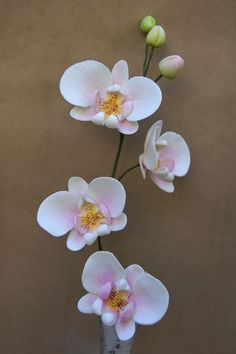 Gumpaste  Moth Orchid Phalaenopsis Small Sugar by SweetEglantine, $50.00