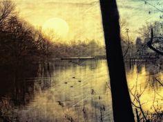 Kauf 'Die Stille am See' von Raven Art auf Leinwand, Alu-Dibond, (gerahmten) Postern und Xpozer.