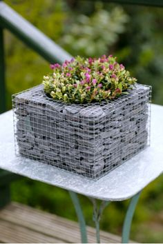 Wire Cube Planter with Slates | The Balcony Gardener