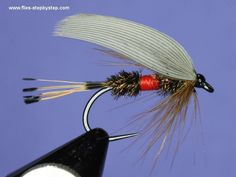 The Royal Coachman is a classic wet fly which is well known for years. Description from flies-stepbystep.com. I searched for this on bing.com/images