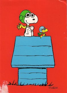 Watching Peanuts makes me so happy! It's ok to be a kid sometimes! It takes Away our stresses! Aline :)