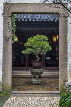 Chinese Classical Garden, Suzhou - Chinese Classical Garden, Suzhou