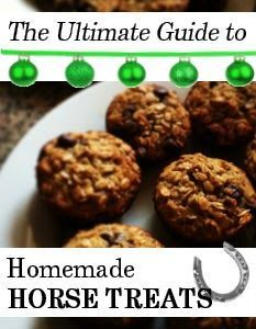 Ultimate Guide to Homemade Horse Treat Recipes   Savvy Horsewoman