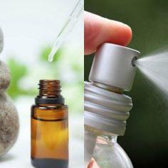 """Рецепты домашних освежителей воздуха: скажем """"нет"""" химии! — Полезные советы"""