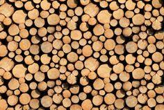 Stère de Bois - Poster digital Architects Paper #wood #trompeloeil #wallpaperXXL http://www.papierspeintsdirect.com/posters.html