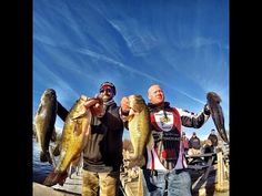 FALL BASS FISHING THE UPPER BAY TOURNAMENT TIPS AND TACTICS