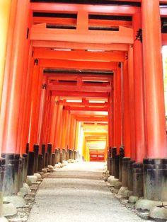 Fushimi Inari Torii (c)MoinServus!