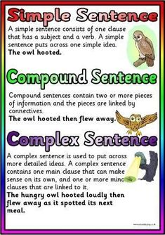 Free types of sentences poster, print and view today! English Teaching Resources, Teaching English Grammar, English Writing Skills, Primary Teaching, Grammar Lessons, Writing Lessons, Teaching Writing, English Lessons, Writing Activities