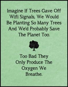 TOP IRONY quotes and sayings : Imagine if trees gave off wifi signals, we would be planting so many trees and we'd probably save the planet too. Too bad they only produce the oxygen we breathe. Great Quotes, Me Quotes, Funny Quotes, Inspirational Quotes, Daily Quotes, Funny Memes, Wisdom Quotes, Rich Quotes, Humour Quotes