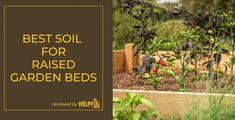 Our Buying Guides will ensure you always make the right choiceLatest Posts Perfect Image, Perfect Photo, Love Photos, Cool Pictures, How To Start Composting, Allotment Gardening, Sandy Soil, Water Activities, Potting Soil