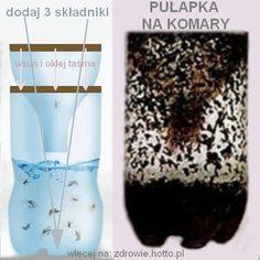 zdrowie.hotto.pl-skuteczna-pulapka-na-komary-domowy-sposob-na-komary-DIY