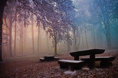 Photograph No Rest by Jasna Bužimkić on 500px