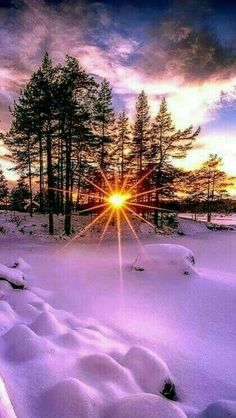 Psychic medium, love spells and accurate psychic online reading call/whatsapp – Beste Winterbilder Winter Sunset, Winter Scenery, Winter Light, Winter Trees, Winter Snow, Amazing Photography, Landscape Photography, Nature Photography, Photography Website