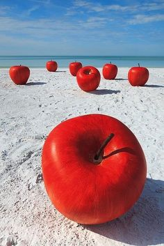 sunsurfer: Apples on the Beach, Fort De Soto State Park, Florida photo by sayran Land Art, Art Environnemental, Jolie Photo, Red Apple, Apple Art, Shades Of Red, Public Art, Red White Blue, My Favorite Color