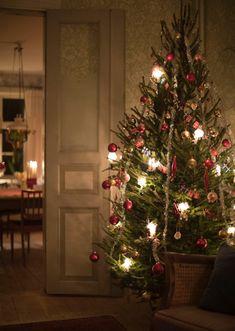 Wallpaper Edgar Sandberg Wallpaper Swedish Christmas, Cozy Christmas, Scandinavian Christmas, Christmas Time, Xmas, Christmas Arrangements, Christmas Decorations, Holiday Decor, Christmas Feeling