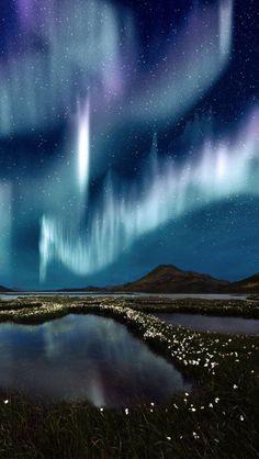 Voyage Theme - aurora borealis | KitchAnn Style