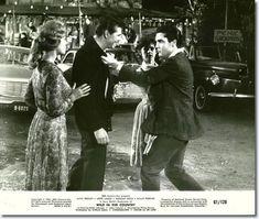 Wild In The Country - 20th Century Fox 1961 : Elvis Movies : Elvis Australia Official Elvis Presley Fan Club :
