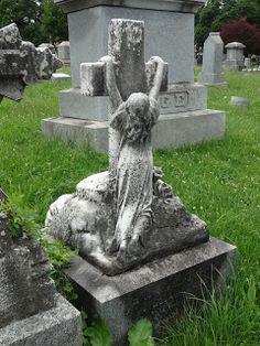 Albany (NY) Daily Photo: Clinging