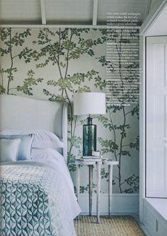 Beech Wide Width Wallpapers