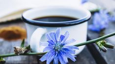Domácí kafe z čekanky skvěle chutná, léčí a je zadarmo - Vitalia. Kimchi, Tableware, Google, Diet, Dinnerware, Tablewares, Dishes, Place Settings