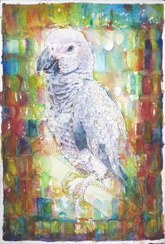 'Loro', Watercolour Mijello_Mission Gold Class and Ink-pen on Saunders Waterford by St Cuthberts Mill, CP(NOT) 38 x 57 cm St Cuthbert, Gold Class, Petra, Watercolour, My Arts, Birds, Ink, Artist, Painting