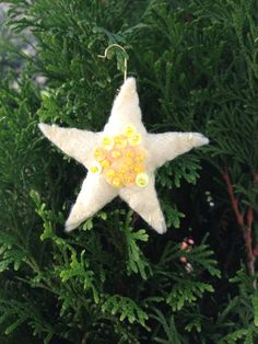 star.one of my first ones..I got better the more I sewed...