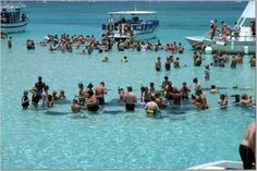 stingray city, grand cayman.... one of the coolest things I've ever gotten to do! Even Thouh I Was Terrified!