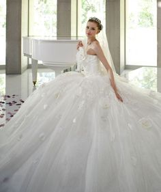The perfect cinderella princess dress