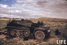 SdKfz 250/3 in Tunisia