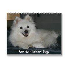2012 American Eskimo Dogs Calendar