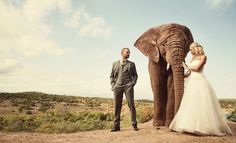 Wedding photo with an elephant ?   Yes please!!