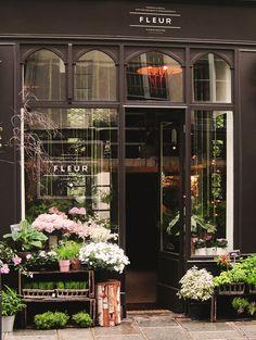 Flower store                                                                                                                                                                                 More