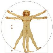 Image result for golden ratio
