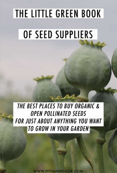 The best places to buy organic and open pollinated seeds for just about anything you want to grow in your garden