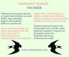 :) Animals, Animales, Animaux, Animais, Animal