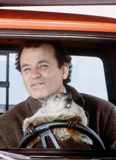 """Bone-chilling cold, peppermint schnapps and Bill Murray vs. a large rodent: how """"Groundhog Day"""" became a beloved classic."""
